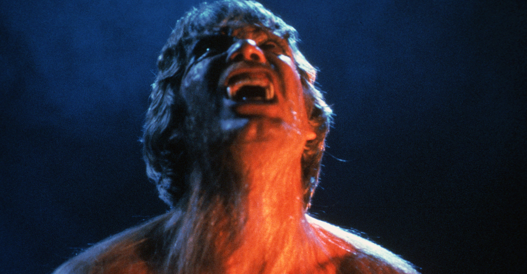The Howling DVD Review   Culturefly