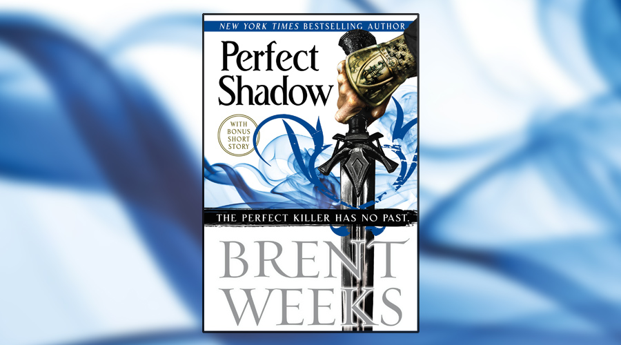 Book Review Perfect Shadow A Night Angel Novella By