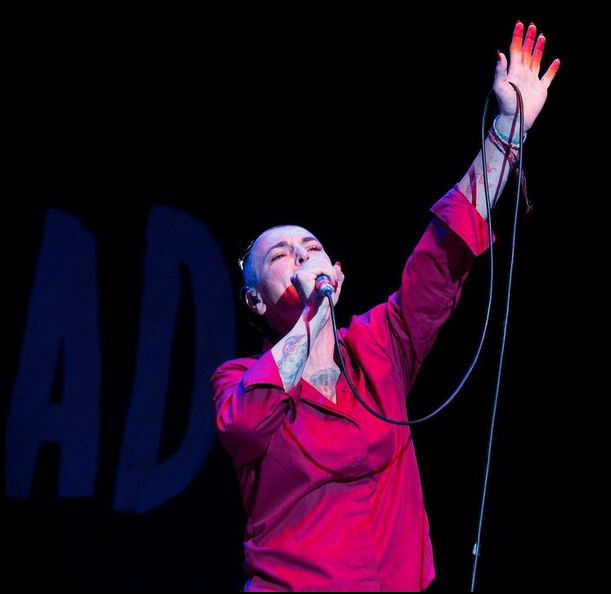 womad-2014-06