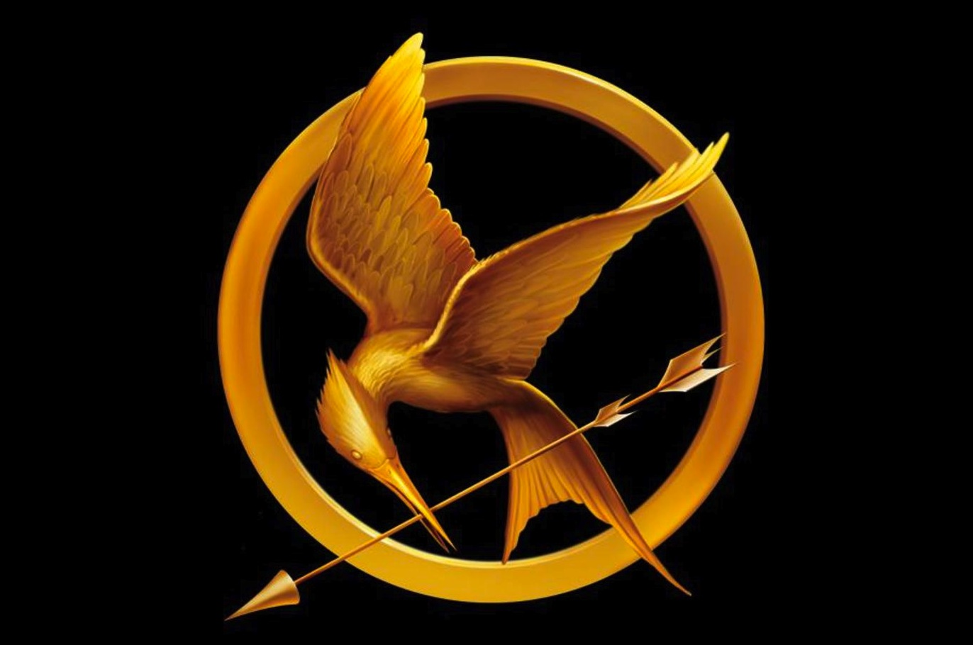 the-hunger-games-mockingjay-pin
