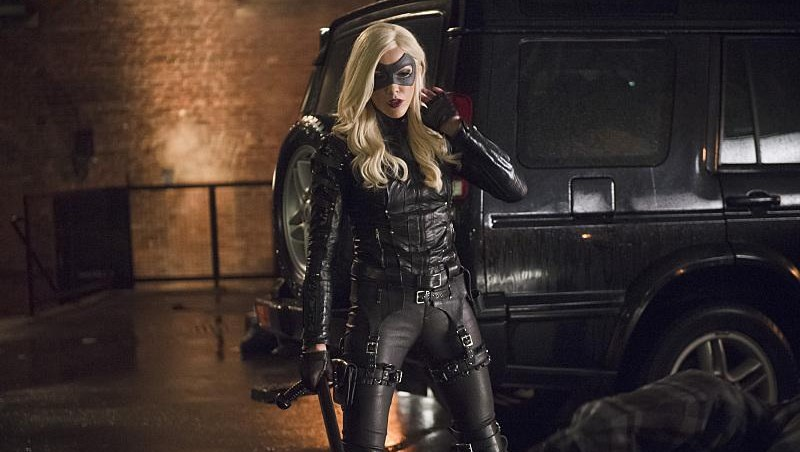 arrow-canaries-02